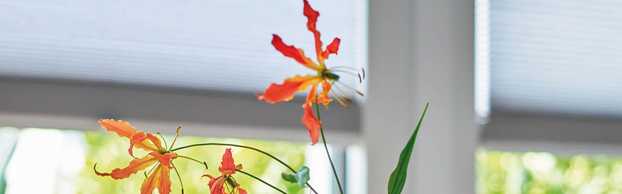 Duette window blinds with flower from Shutterstyle